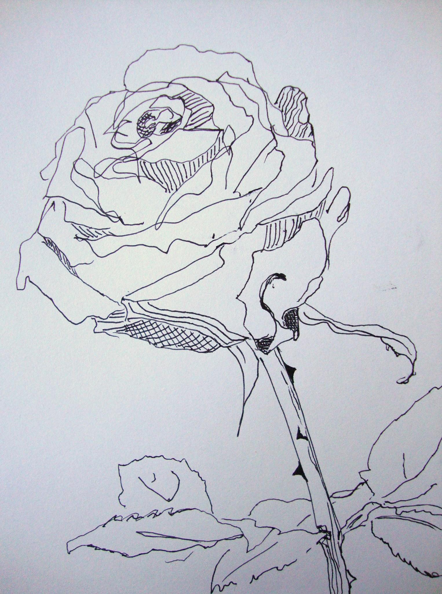 Januar 2011 zeichnen mit martina wald - Zeichnen ideen ...