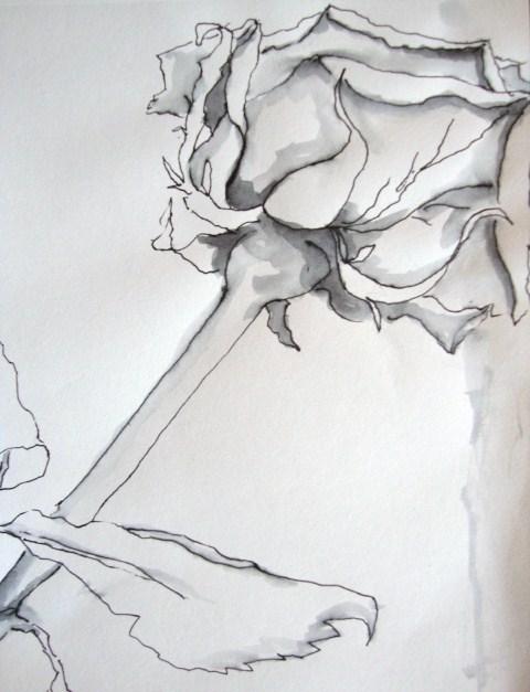 Kunst Zeichnen Mit Martina Wald Seite 107