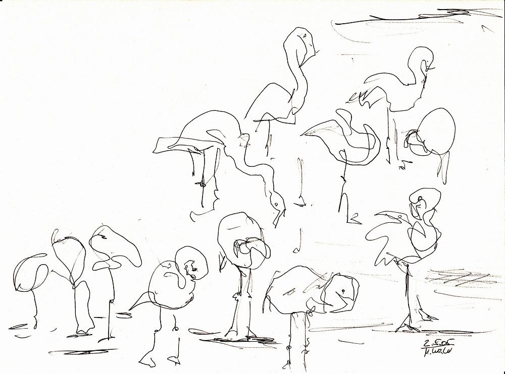 berliner flamingos zeichnen mit martina wald. Black Bedroom Furniture Sets. Home Design Ideas