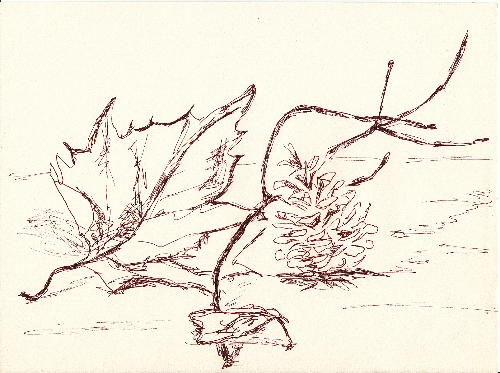 Blatt Zeichnen Mit Martina Wald