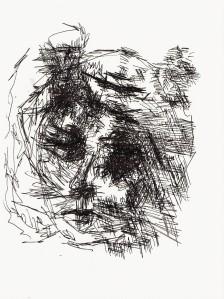 Zwei Gesichter1 (2)