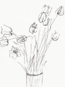 Tulpen geöffnet