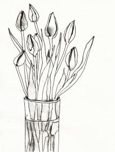 Tulpen geschlossen