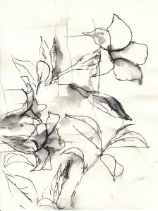 Blumen im Garten 1