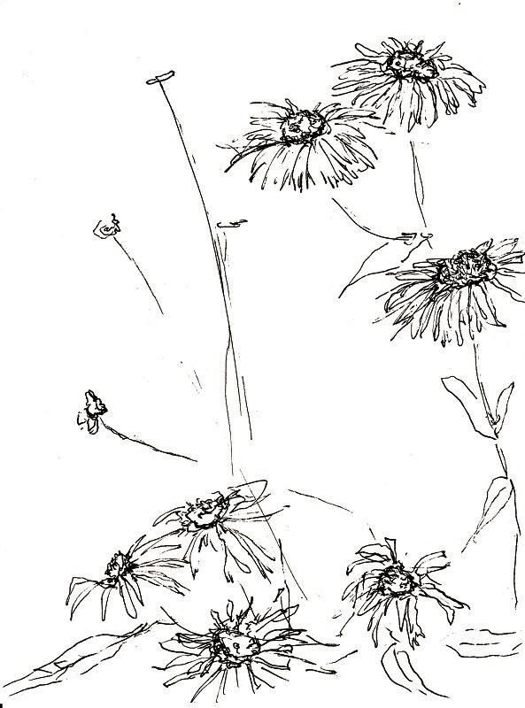 2013 zeichnen mit martina wald seite 8. Black Bedroom Furniture Sets. Home Design Ideas