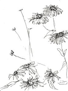 Blumen im Garten 3