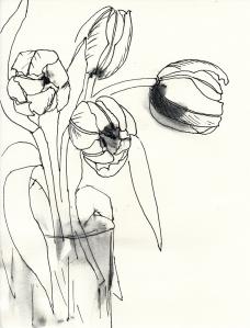 Tulpen_0001