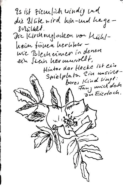Tagebuch Heckenrose