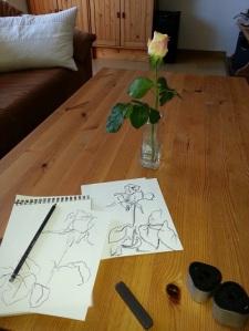 Rose zeichnen