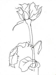 rose274